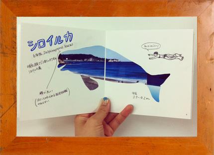 6.24(日) Photoback × mammoth school 自分だけの図鑑をつくろう vol.1 Sea @ カタリストBA
