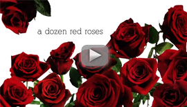 Mammoth English | a dozen red roses